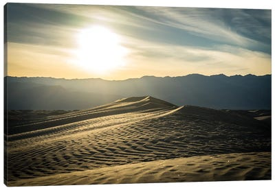 Mesquite Dunes Canvas Art Print