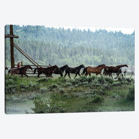 Round Up Canvas Print #HRB82} by Heather Roberson Canvas Artwork