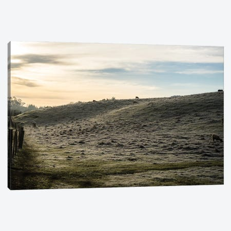 Winter Morning In The Country Canvas Print #HRB9} by Heather Roberson Canvas Wall Art