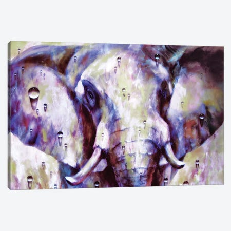 Elephant Canvas Print #HRH28} by HRH EMERALD Canvas Art