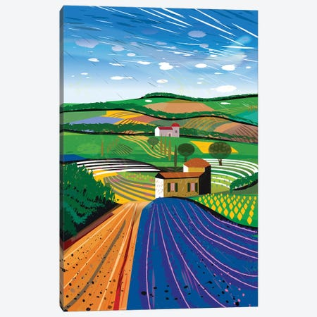 Lavender Farm Canvas Print #HRK148} by Charles Harker Canvas Wall Art