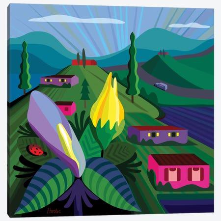 Lake Chapala Canvas Print #HRK150} by Charles Harker Art Print
