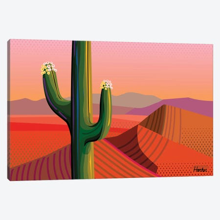 Saguaro Bloom Canvas Print #HRK151} by Charles Harker Art Print