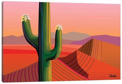 Saguaro Bloom Canvas Art Print