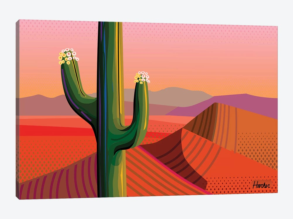 Saguaro Bloom by Charles Harker 1-piece Canvas Art