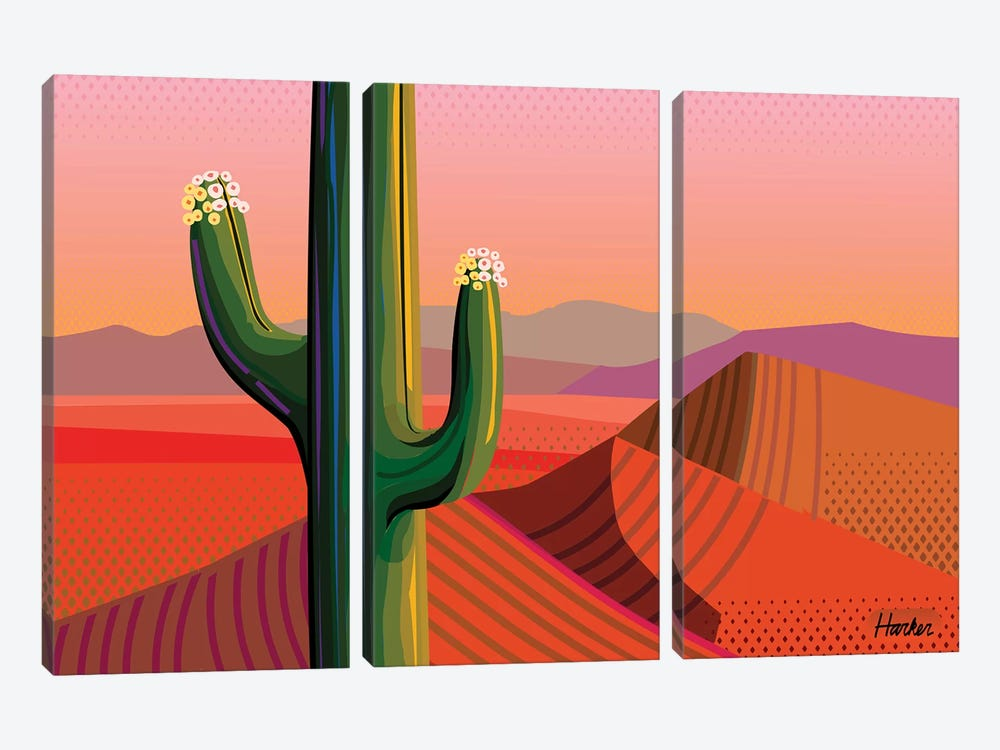 Saguaro Bloom by Charles Harker 3-piece Canvas Wall Art