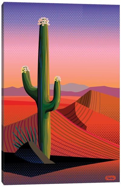 Saguaro Blossom Sunset Canvas Art Print