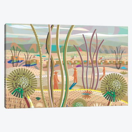 Joshua Tree Canvas Print #HRK15} by Charles Harker Canvas Print