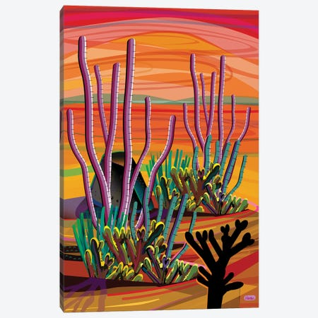 Ajo Canvas Print #HRK166} by Charles Harker Canvas Print