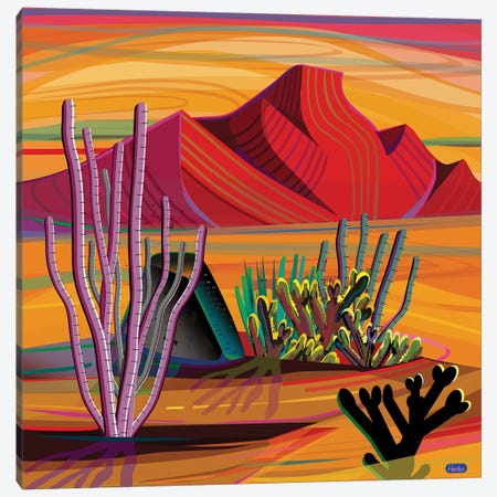 Cactus Garden Canvas Print #HRK169} by Charles Harker Canvas Art
