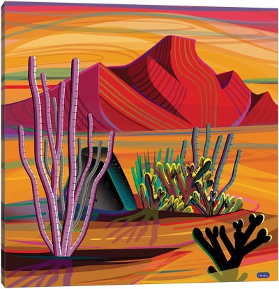 Cactus Garden Canvas Art Print
