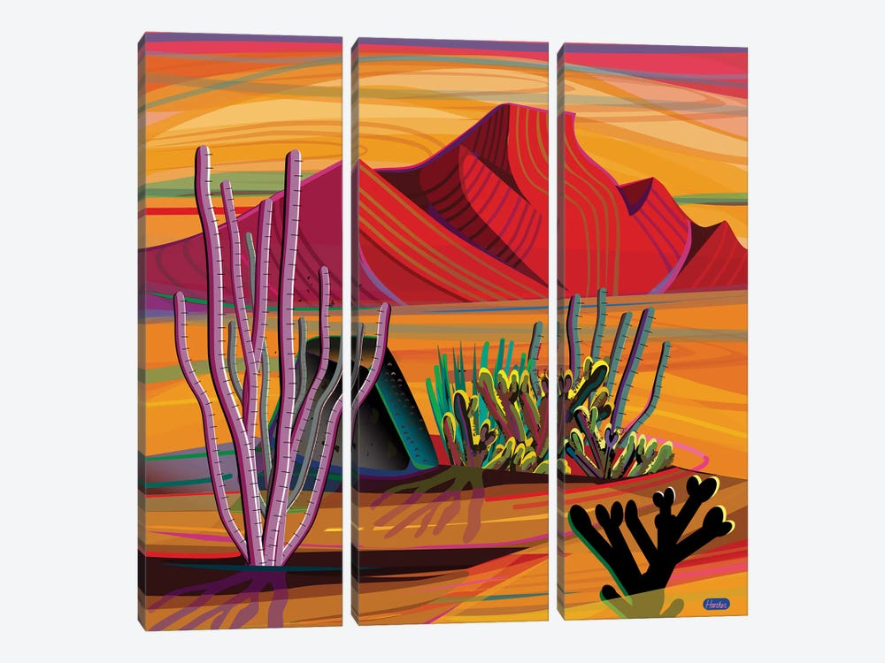 Cactus Garden by Charles Harker 3-piece Canvas Art Print