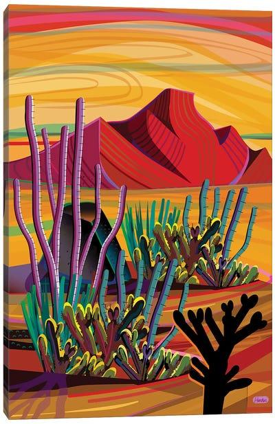 Cactus Oasis Canvas Art Print