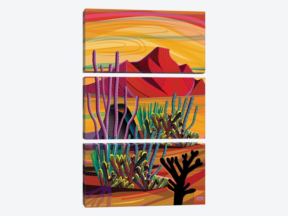 Cactus Oasis by Charles Harker 3-piece Canvas Print