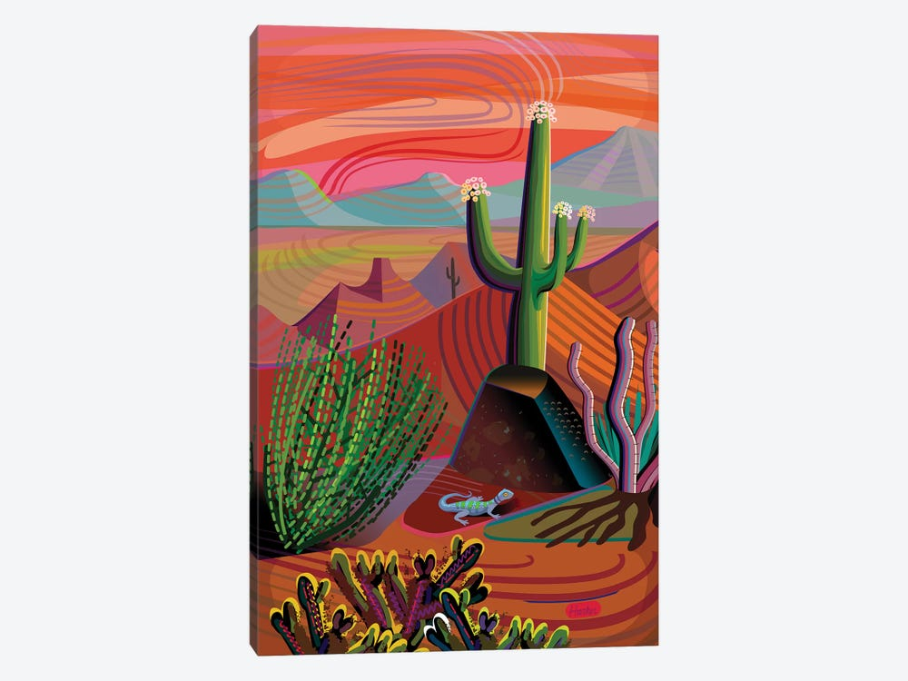 Gila River Desert Sunset by Charles Harker 1-piece Canvas Art Print
