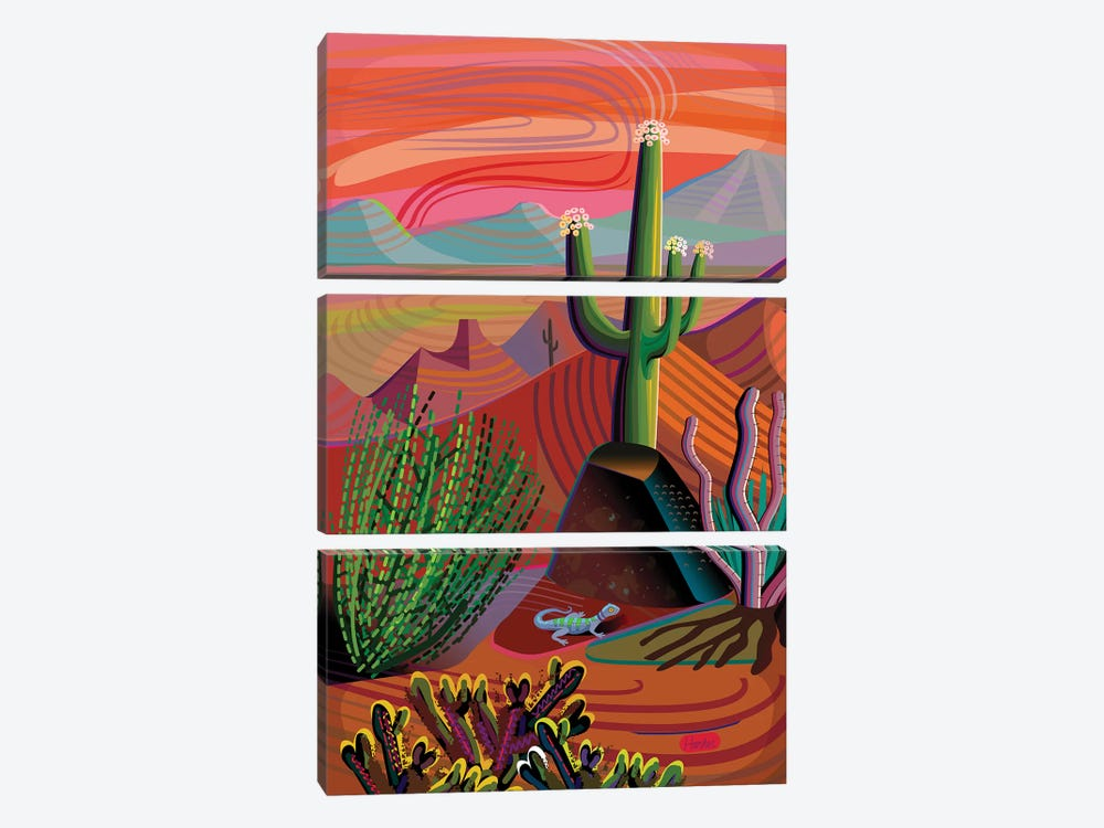 Gila River Desert Sunset by Charles Harker 3-piece Canvas Print