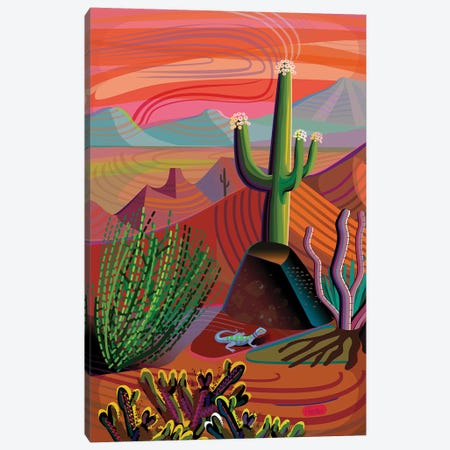 Gila River Desert Sunset Canvas Print #HRK172} by Charles Harker Canvas Art Print