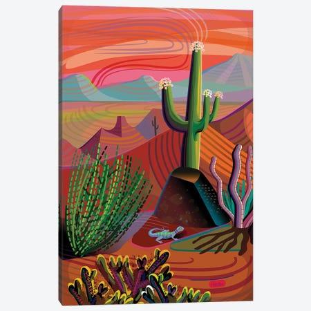 Gila River Desert Sunset Canvas Print #HRK172} by Charles Harker Canvas Art Print
