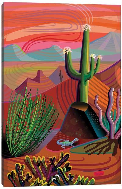 Gila River Desert Sunset Canvas Art Print
