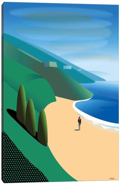 San Gregorio Beach Canvas Art Print