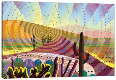 Desert Eye Canvas Art Print