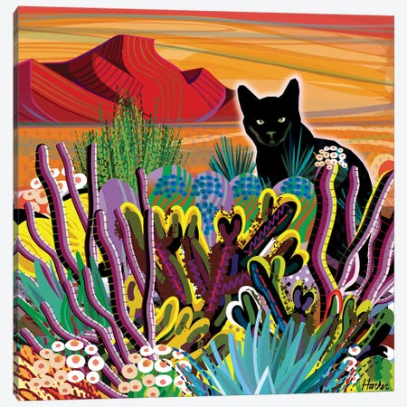 Pinacate Primavera Canvas Print #HRK239} by Charles Harker Canvas Artwork
