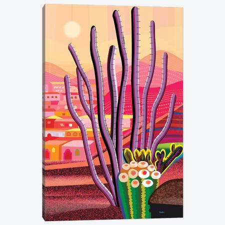 Ocotillo Canvas Print #HRK256} by Charles Harker Canvas Print