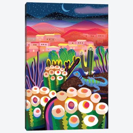 Wonder Valley Night Canvas Print #HRK264} by Charles Harker Canvas Art