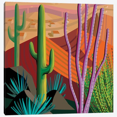 Tucson, Square Canvas Print #HRK62} by Charles Harker Canvas Print