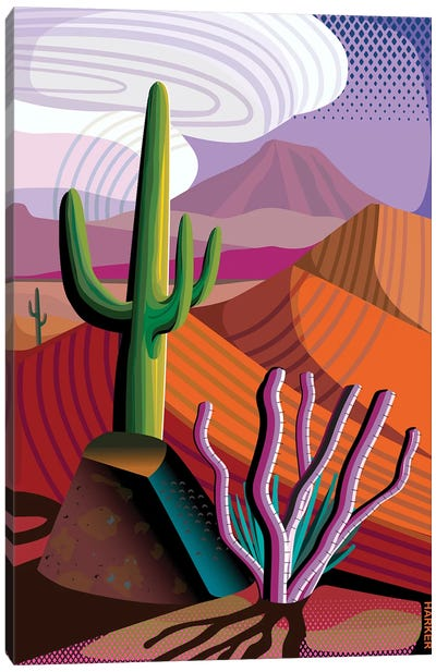 Gila River Reserve Canvas Art Print