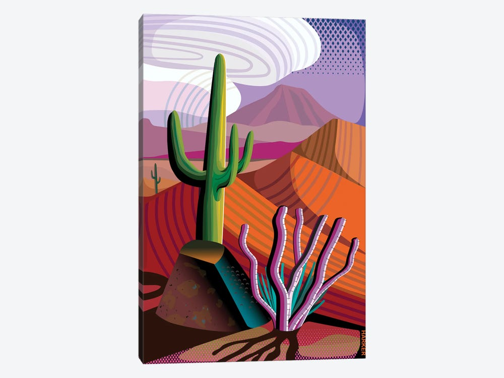 Gila River Reserve 1-piece Canvas Print