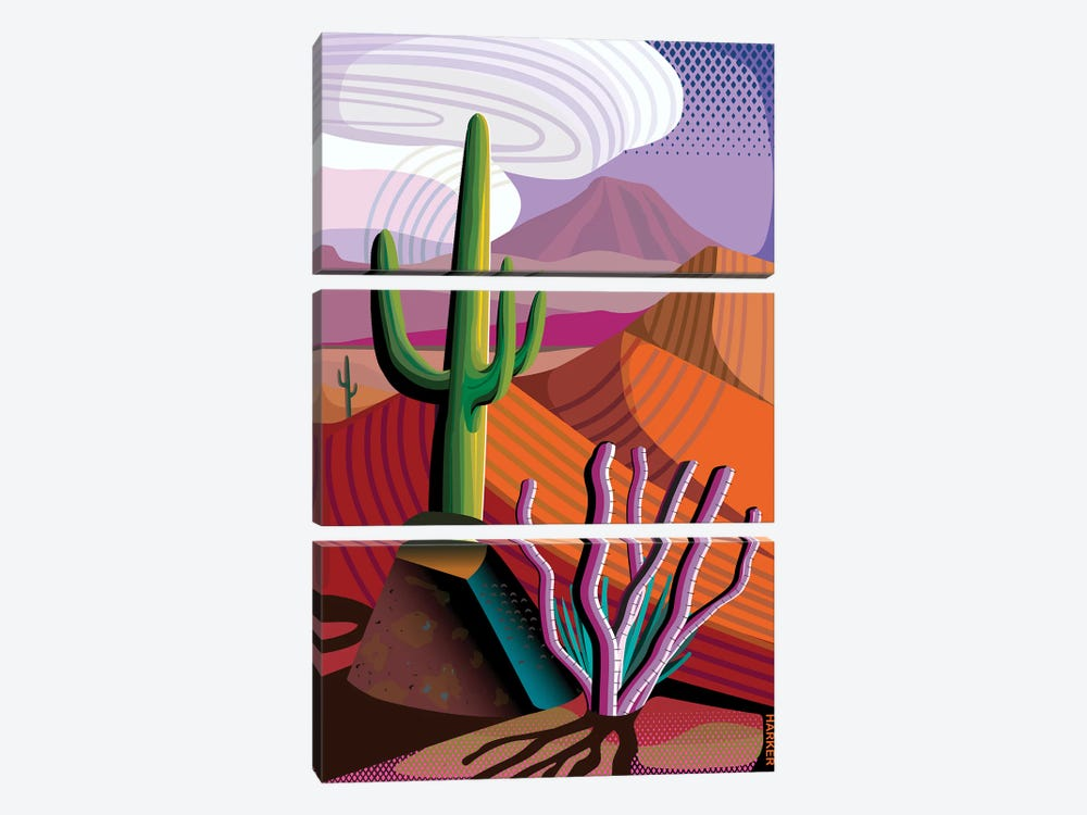 Gila River Reserve by Charles Harker 3-piece Canvas Art Print