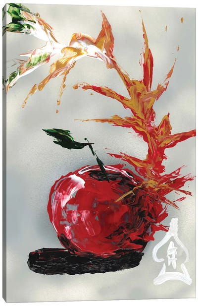 Apple Abstract Canvas Art Print