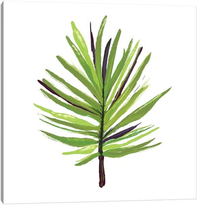 Leaves of the Tropics III Canvas Art Print