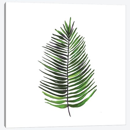 Leaves of the Tropics IV Canvas Print #HRW29} by hartworks Canvas Art Print