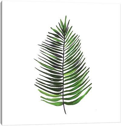 Leaves of the Tropics IV Canvas Art Print