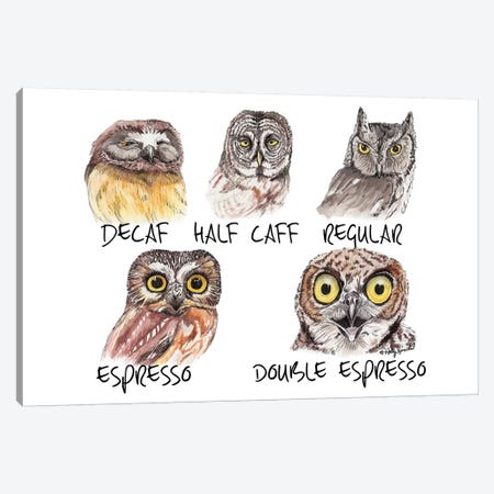 Owl Caffeine Meter Canvas Print #HSI13} by Holly Simental Canvas Print
