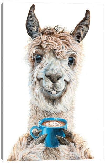 Llama Latte Canvas Art Print