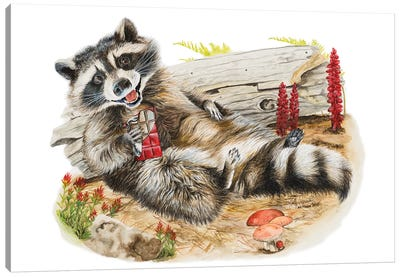Chocolate Bandit Canvas Art Print