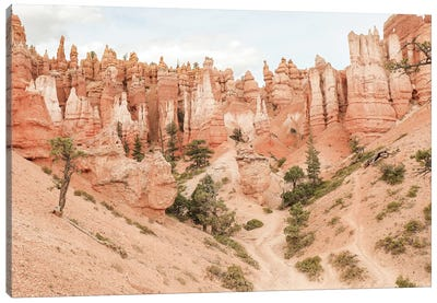 Colors Of Bryce Canyon Canvas Art Print