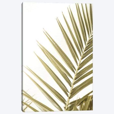 Leaf Of A Palm Canvas Print #HSK88} by Henrike Schenk Canvas Wall Art