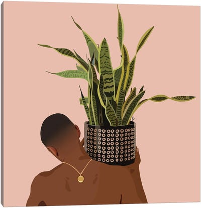 Plant Daddy Snake Plant Canvas Art Print