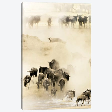 Swarming Canvas Print #HUS1} by Husain Alfraid Art Print