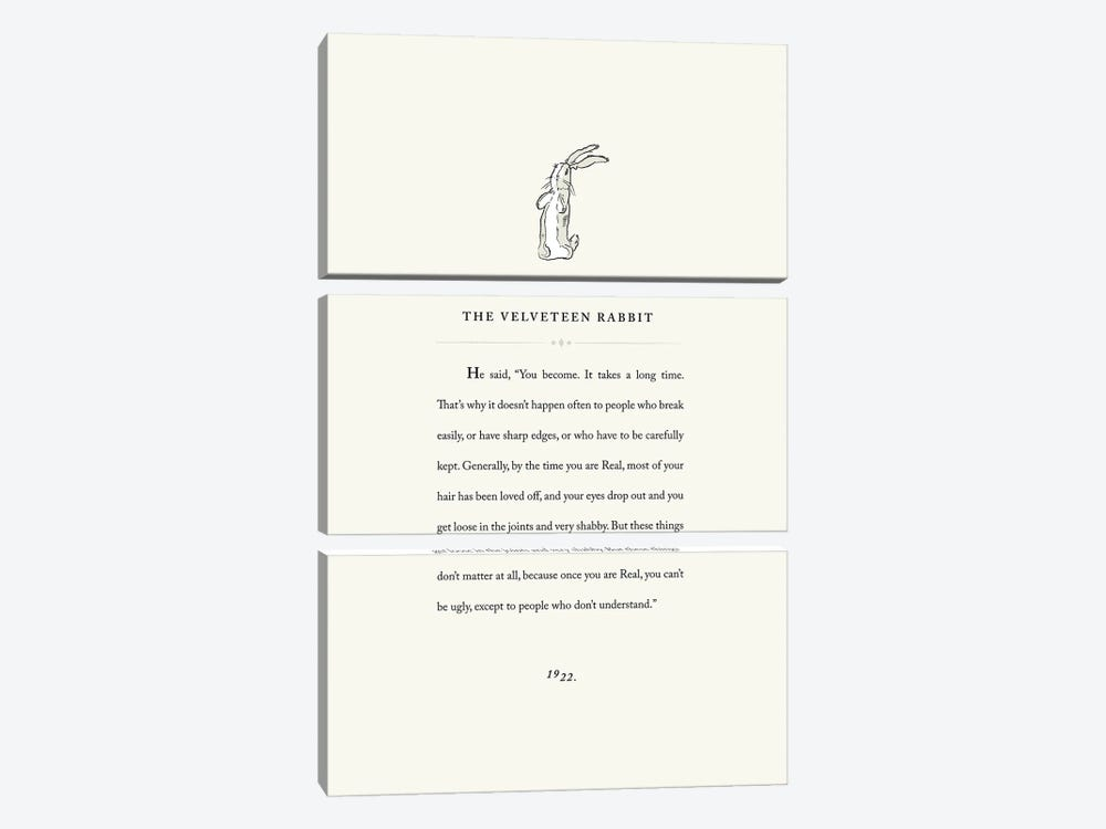 Velveteen Rabbit Book Page Illustration by Holly Van Wyck 3-piece Canvas Art Print