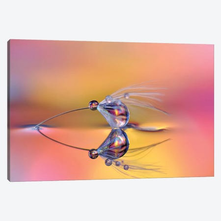 Color Kiss Canvas Print #HWM3} by Heidi Westum Canvas Artwork