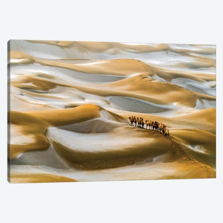 Desert Winter Canvas Print #HZH12} by Hua Zhu Canvas Wall Art