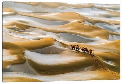 Desert Winter Canvas Art Print