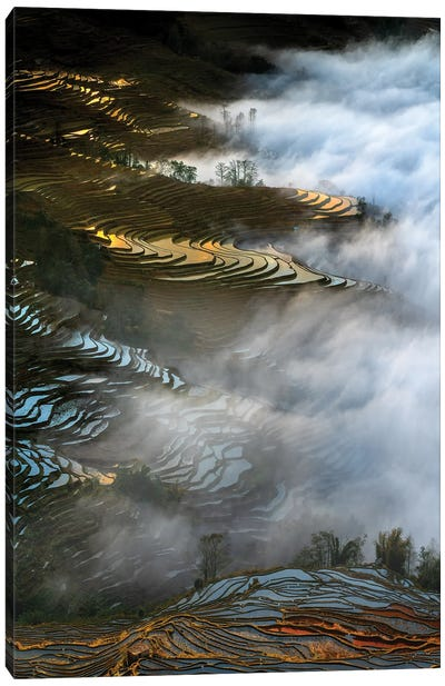 Colorful Rice Terraces Canvas Art Print