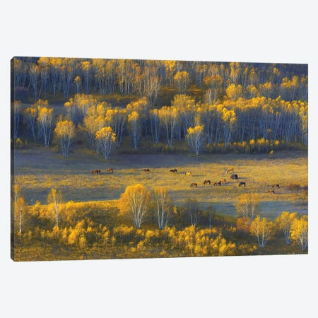 Fall Serenity Canvas Print #HZH31} by Hua Zhu Canvas Wall Art