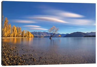 Autumn In Lake Wanaka Canvas Art Print